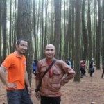 Wisata Hutan Pinus Mangunan Yogyakarta