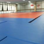 Gor Judo Cempaka Putih Tempat Latihan Jujitsu Jakarta