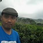 Foto di Kebun Teh Kemuning