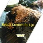 Bebek Kremes Bu Uju Tempat Makan Enak Slipi Jakarta