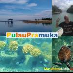 Ada Apa di Pulau Pramuka? Review Wisata